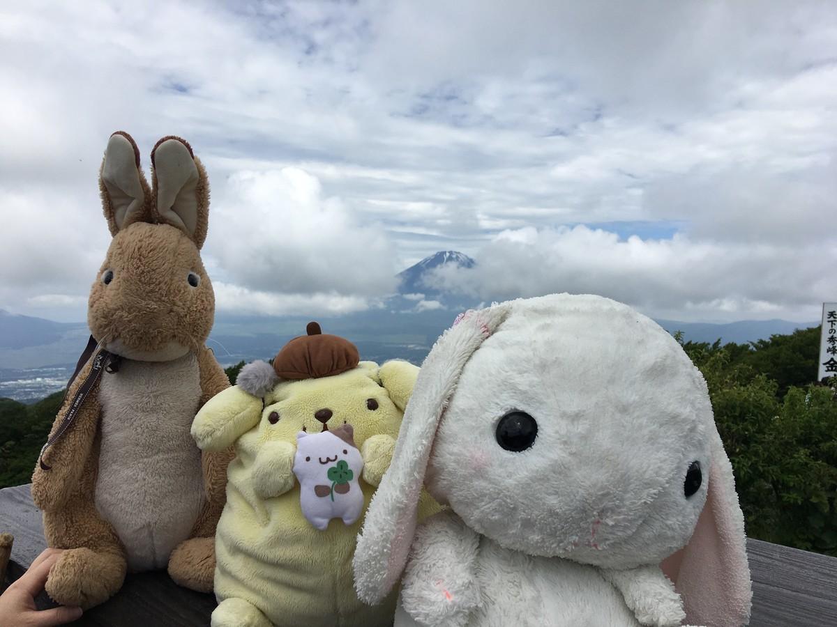 うさ次郎とラビット!ぬいぐるみが金時山に登る