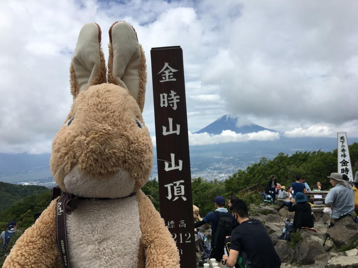 金時山頂上からみる富士山