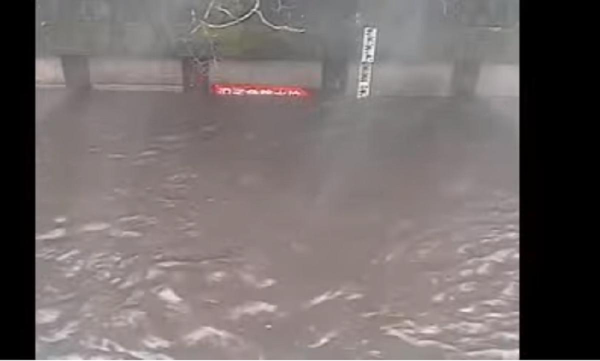 ライブカメラ映像!石神井川が台風14号で氾濫!避難場所はどこ?
