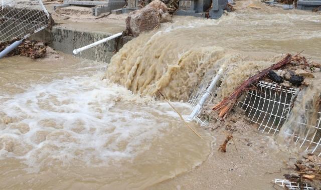 緊急避難速報!石神井川が氾濫ライブカメラ映像!石神井川が台風14号で氾濫!