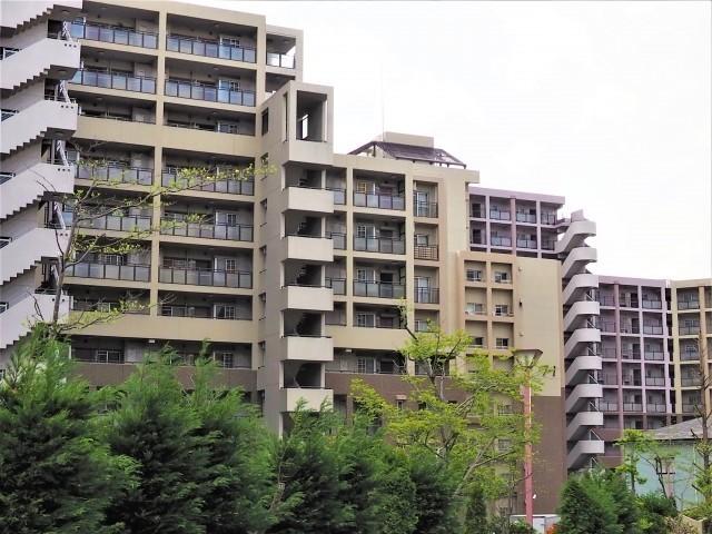 大島優子さん林遣都さんの神奈川県のマンションはどこ?