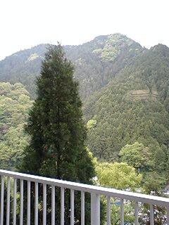 f:id:tadatarai:20090506123115j:image:right