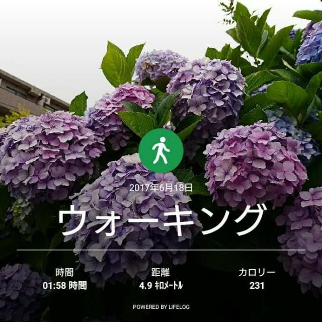 f:id:taebo0721:20170620224339j:image