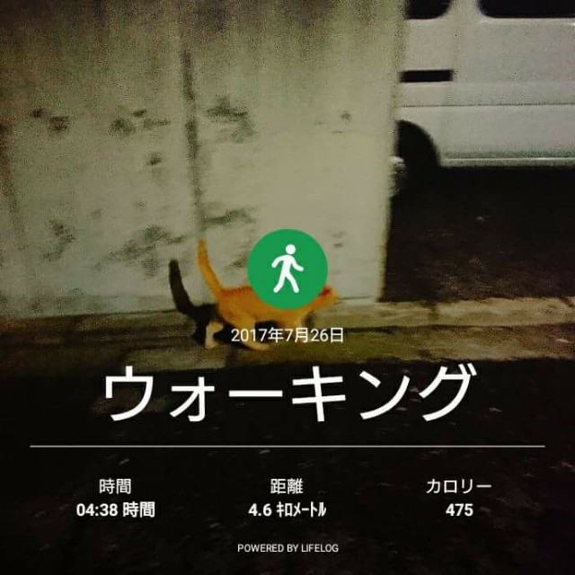 f:id:taebo0721:20170727123202j:image