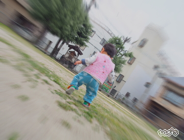 f:id:taekoron:20170423150506j:plain