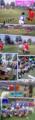 10月27日「兵庫県U-10フットサル大会 尼崎大会」