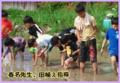 5月21日「田植え!!」