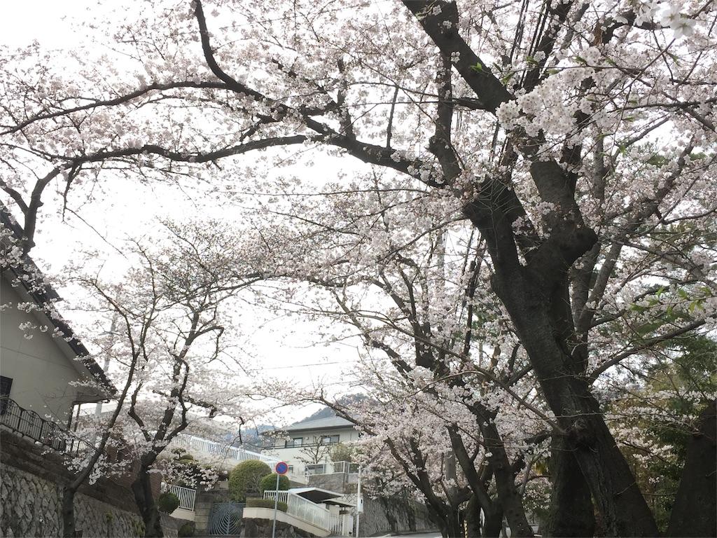 f:id:tagosaku_D_54:20170406011401j:image