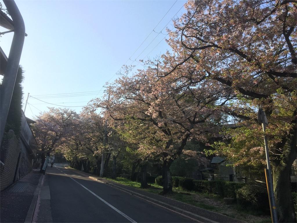 f:id:tagosaku_D_54:20170418001250j:image