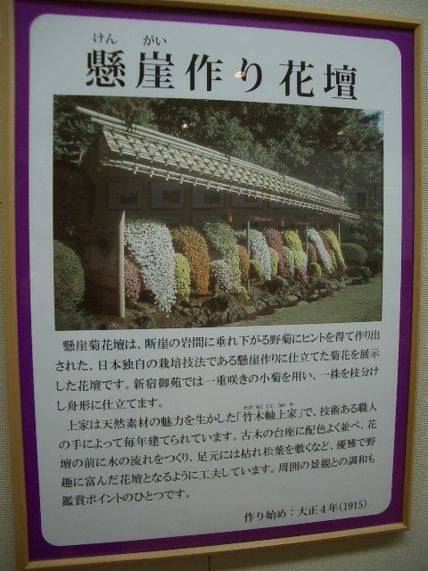 https://cdn-ak.f.st-hatena.com/images/fotolife/t/taguchifamily/20091028/20091028155125.jpg