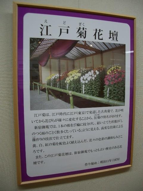 https://cdn-ak.f.st-hatena.com/images/fotolife/t/taguchifamily/20091028/20091028155149.jpg