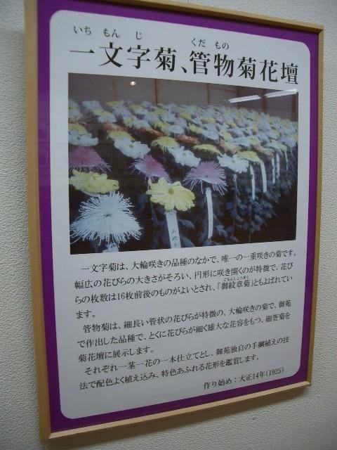 https://cdn-ak.f.st-hatena.com/images/fotolife/t/taguchifamily/20091028/20091028155158.jpg