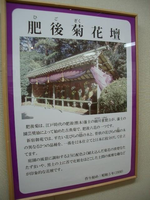 https://cdn-ak.f.st-hatena.com/images/fotolife/t/taguchifamily/20091028/20091028155206.jpg