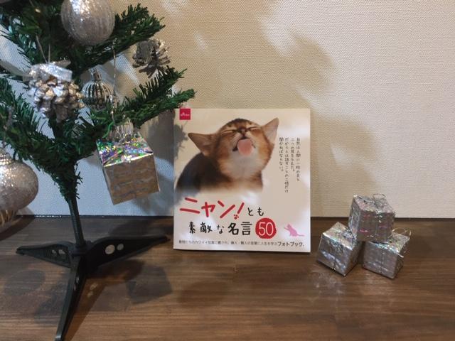 【ダイソー】猫好きの方は必見!癒されながら人生の大切さを教えてもらおう♪