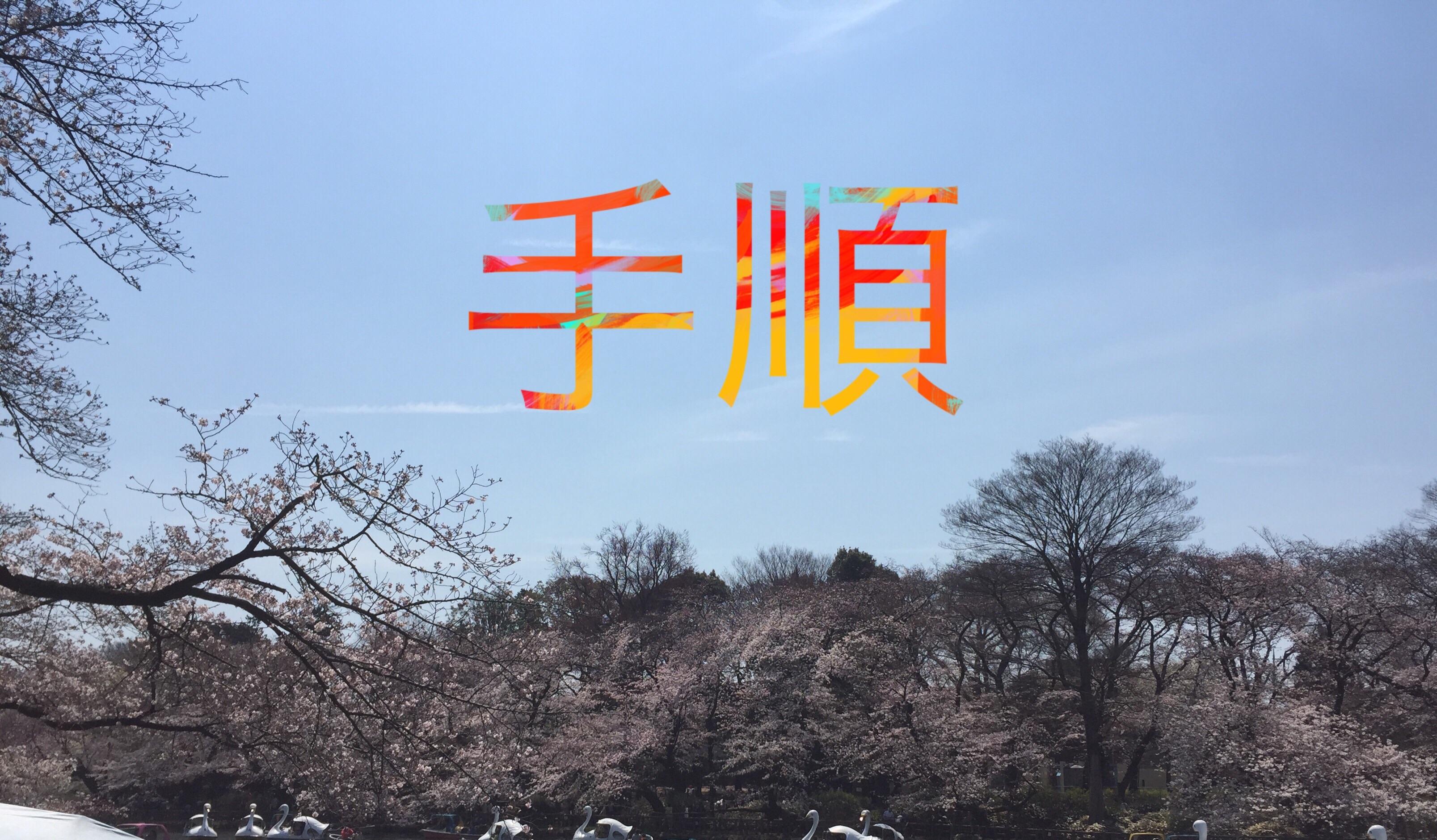 f:id:tai_pointsite_netbusiness:20170625234324j:image