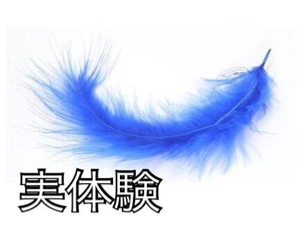 f:id:tai_pointsite_netbusiness:20170625234947j:image