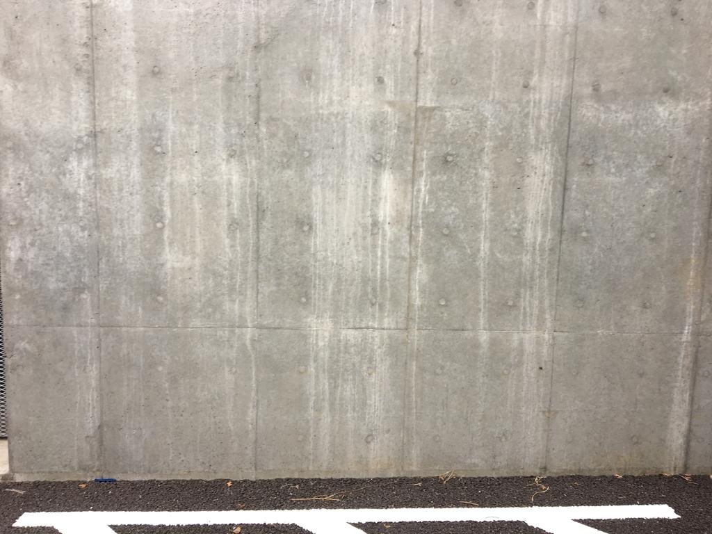 f:id:taichi6930-tokyojihen-pelusa:20181226015259j:plain