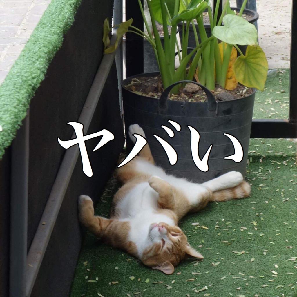 f:id:taichinakajima:20171106220250j:plain