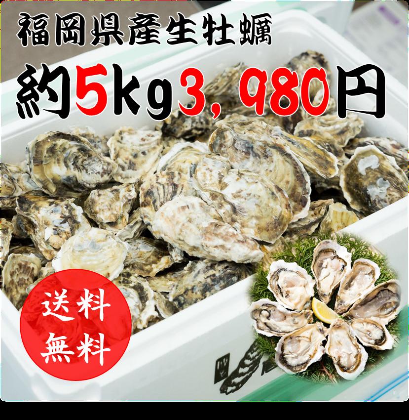 f:id:taigixi:20180504182933p:plain