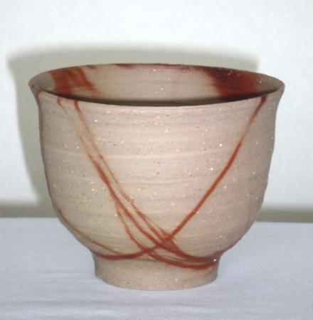f:id:taiju-ssk:20100115105236j:image