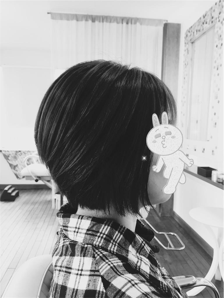 f:id:taikikun81:20170205182837j:image