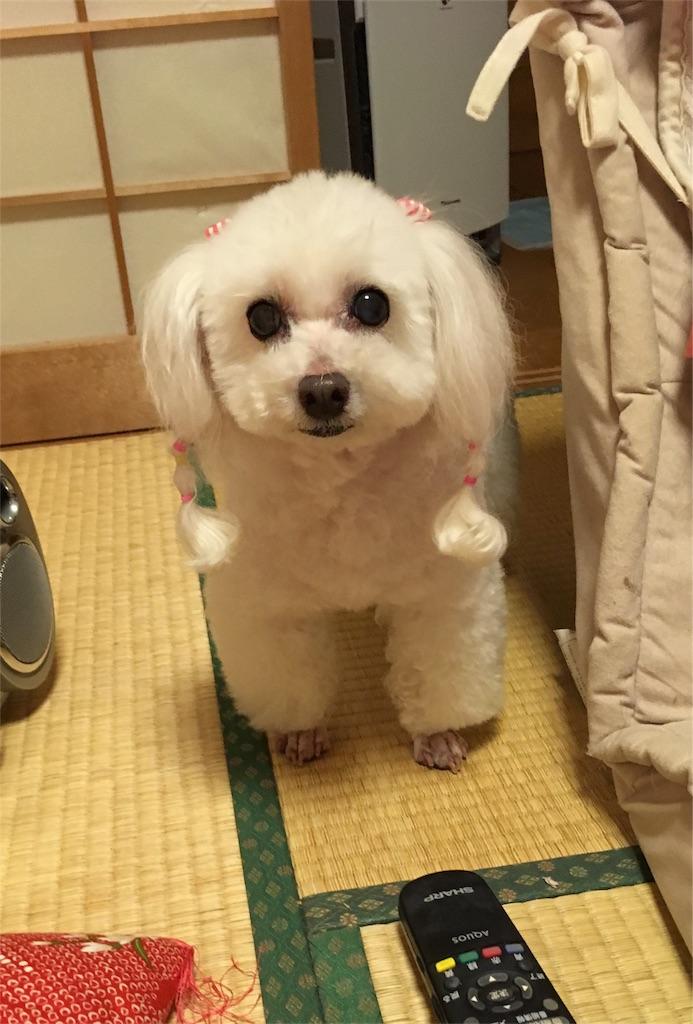 f:id:taikikun81:20170623210647j:image