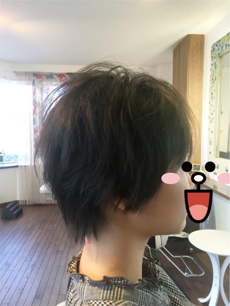 f:id:taikikun81:20180215183119j:image