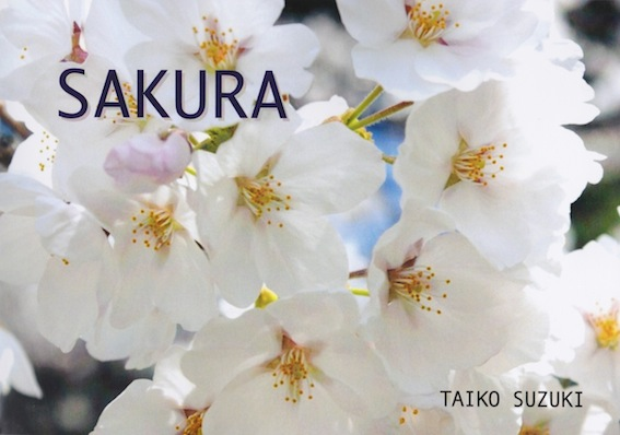 f:id:taikotodasuzuki:20140223174604j:plain