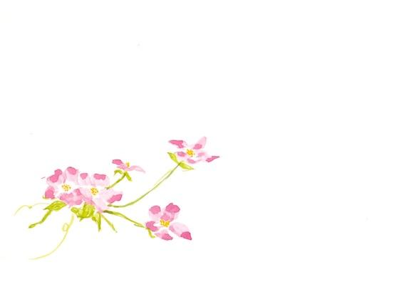 f:id:taikotodasuzuki:20171117110420j:plain