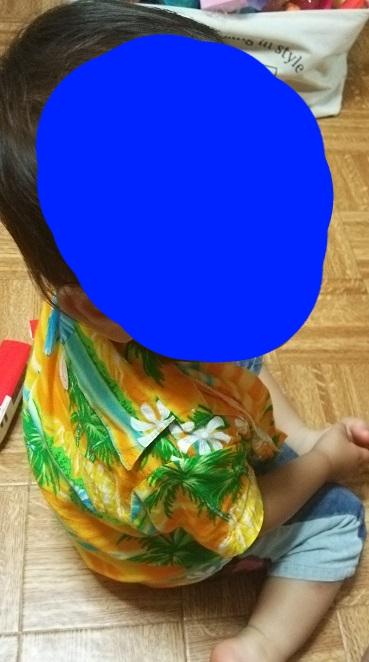 f:id:taikutsu8823:20160715212830j:plain