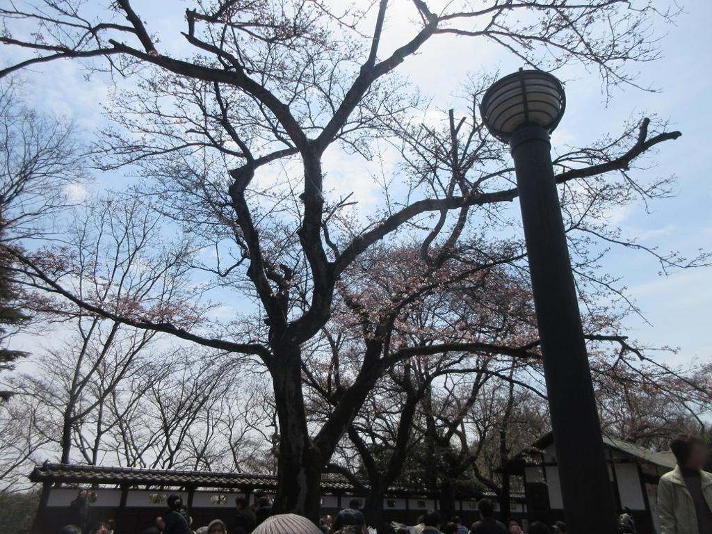 f:id:taikutsu8823:20170409211402j:plain