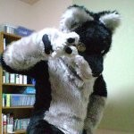 f:id:tail_furry:20060912232606j:image
