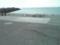 ノシャップ岬の近くにカモメが