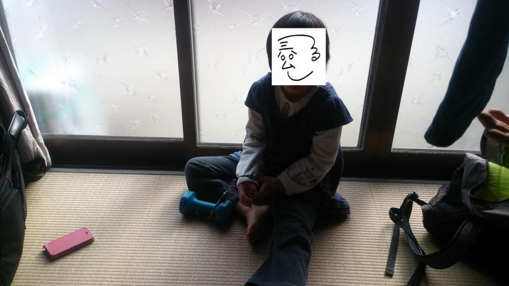 f:id:tainosashimi:20170109193159j:plain