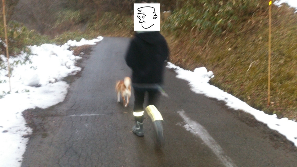 f:id:tainosashimi:20170109193543j:plain