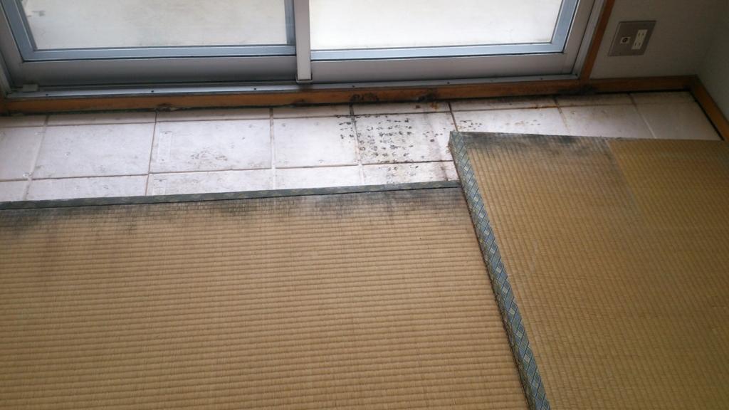 f:id:tainosashimi:20170201192944j:plain