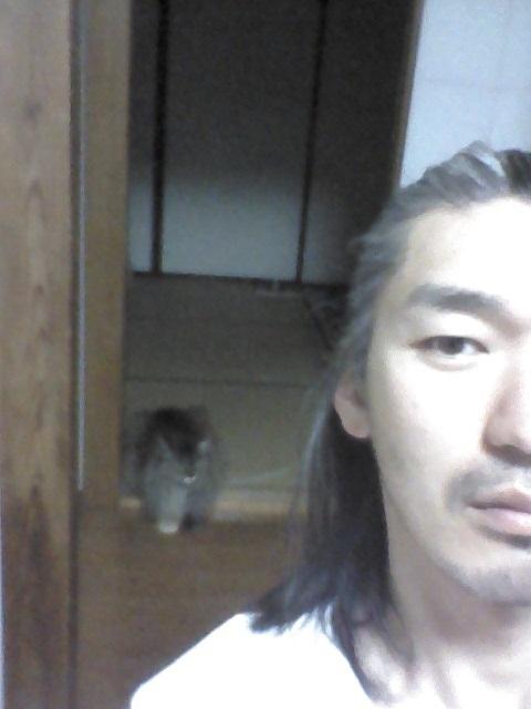f:id:tainosashimi:20170520200141j:plain