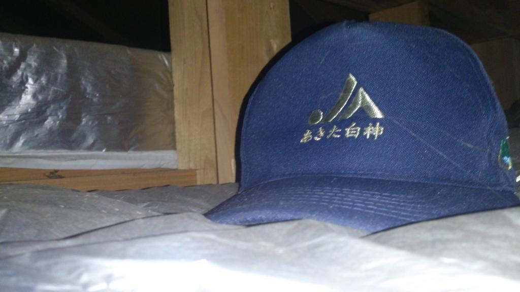 f:id:tainosashimi:20170822202204j:plain