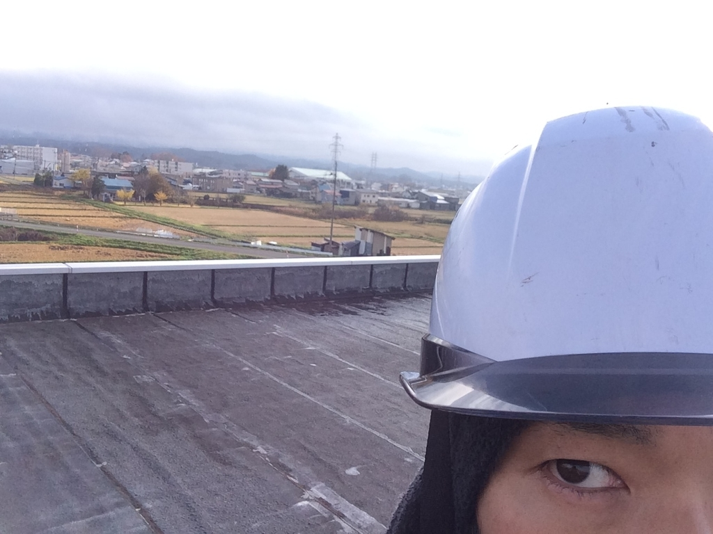 f:id:tainosashimi:20181113191444j:plain