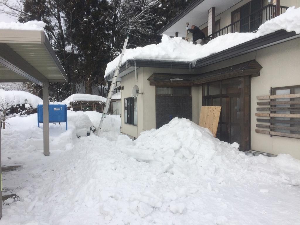 f:id:tainosashimi:20190125191940j:plain