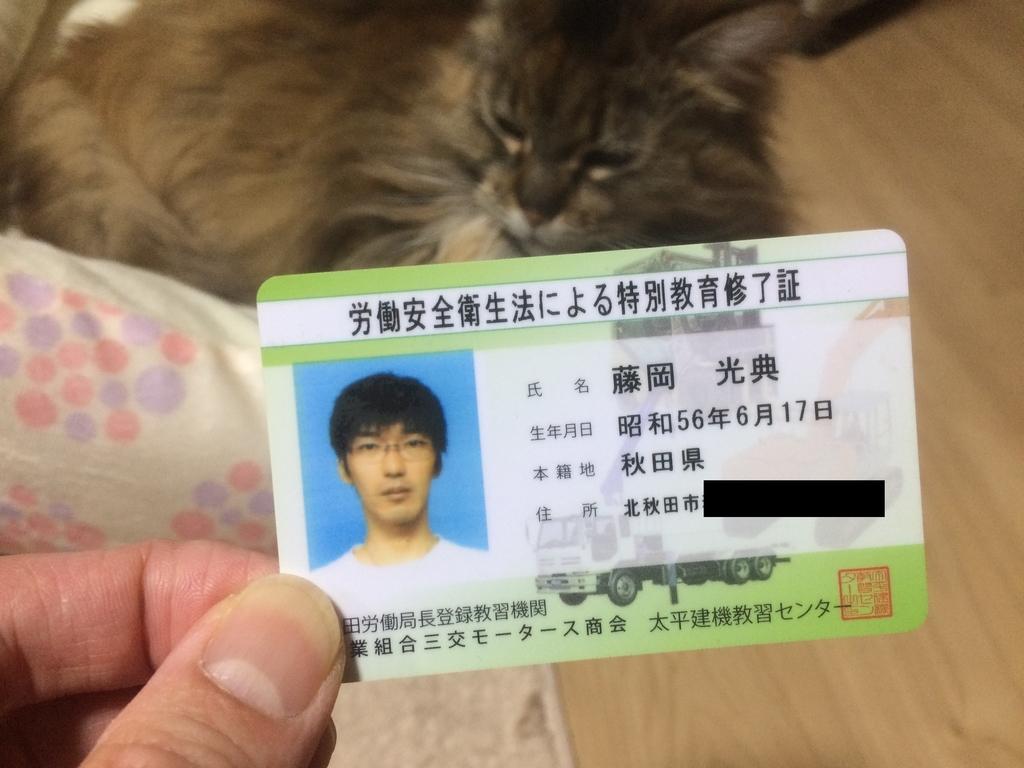 f:id:tainosashimi:20190211211802j:plain
