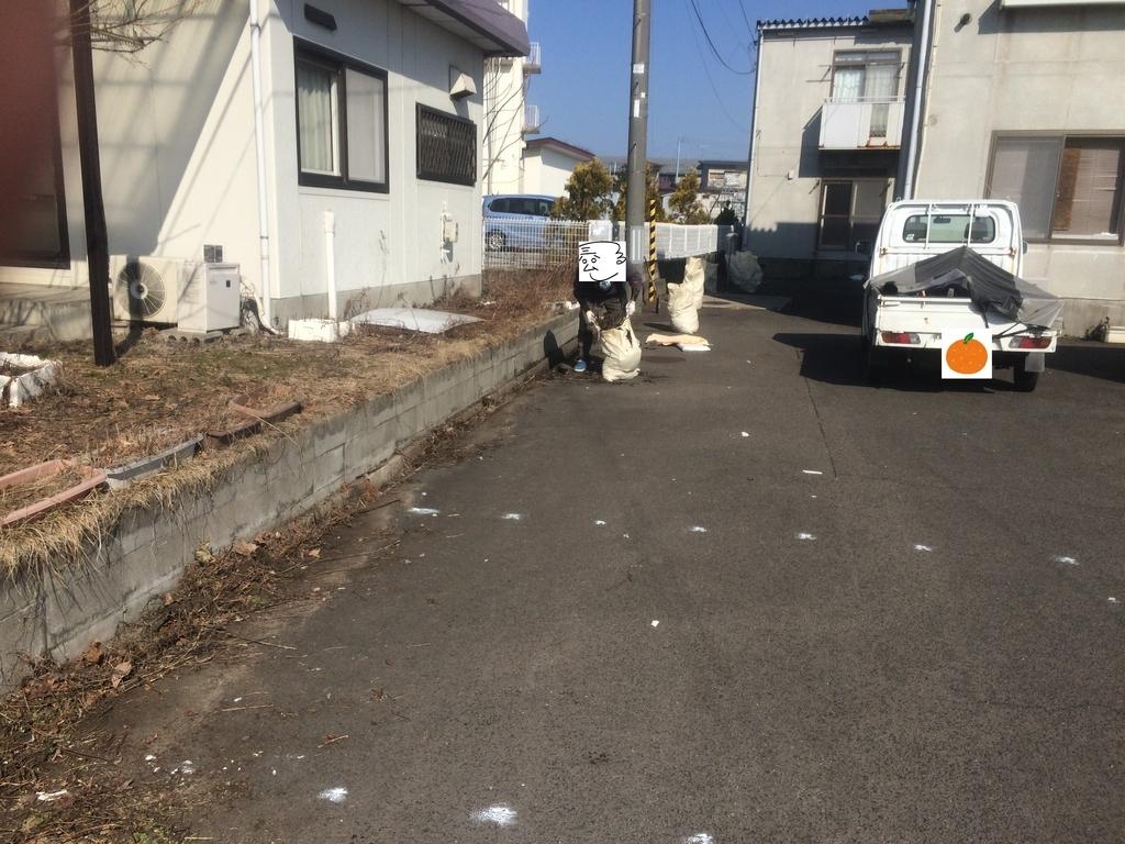 f:id:tainosashimi:20190305190023j:plain