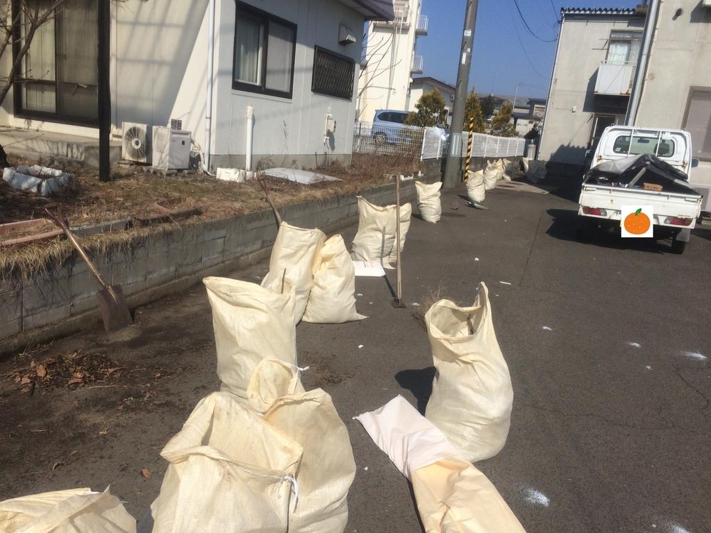 f:id:tainosashimi:20190305190141j:plain