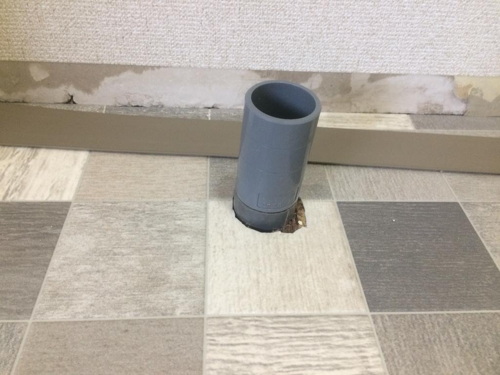f:id:tainosashimi:20190311191452j:plain