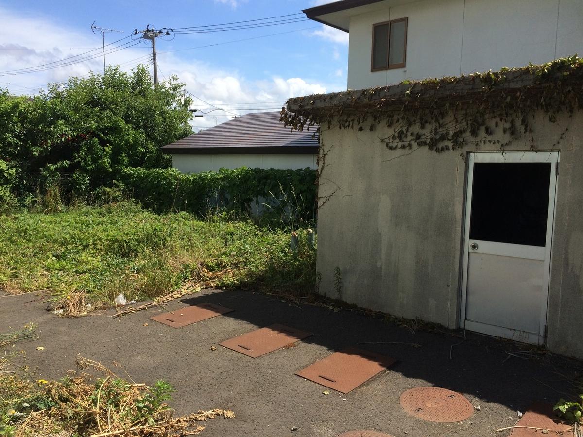 f:id:tainosashimi:20190618192804j:plain