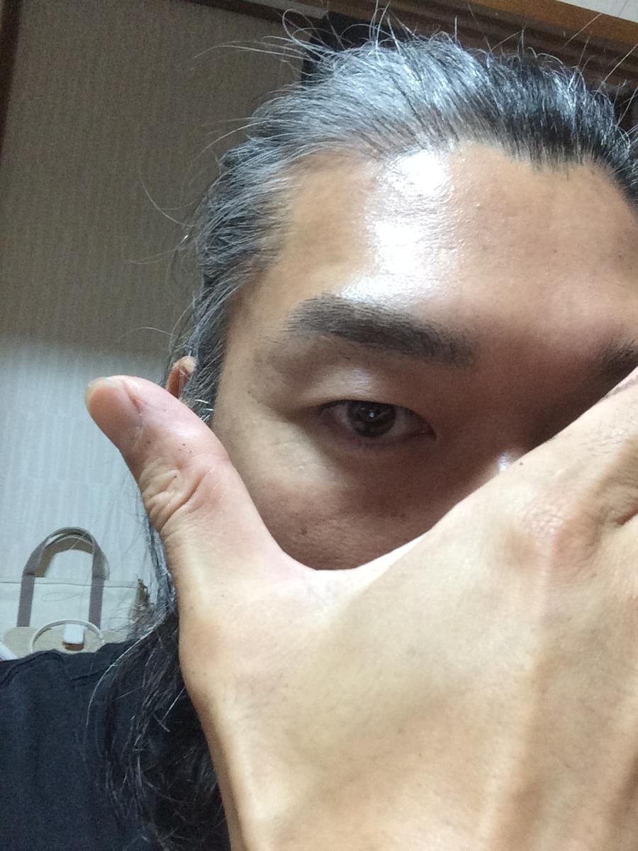 f:id:tainosashimi:20190627184940j:plain