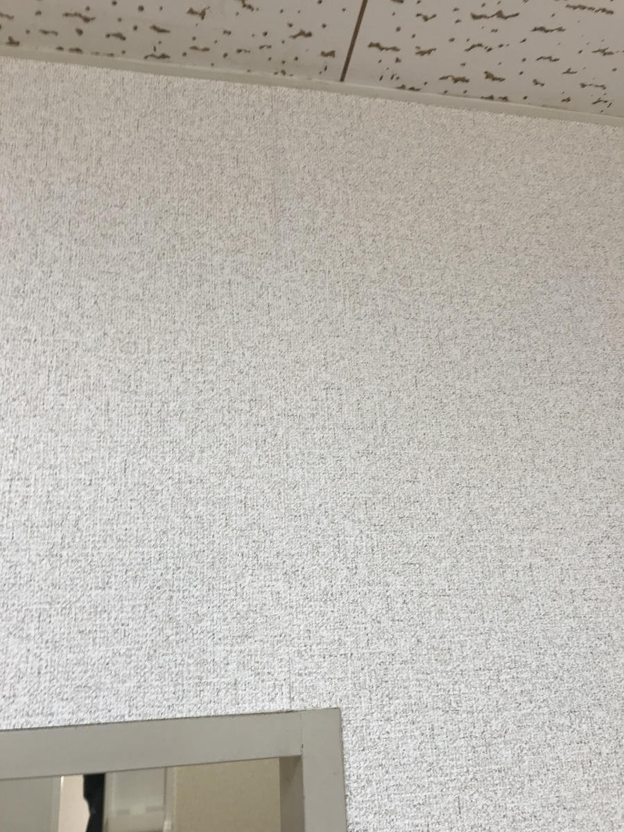 f:id:tainosashimi:20191213190030j:plain