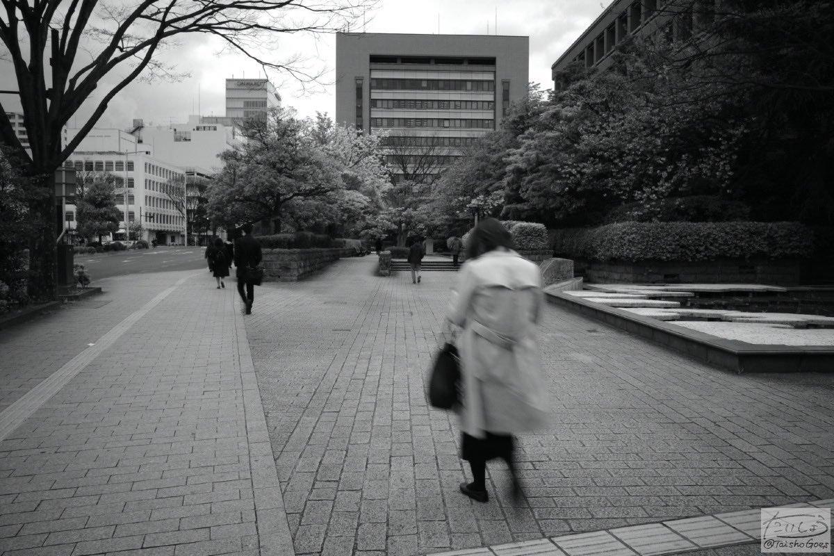 f:id:taisho_goes:20200424201837j:plain
