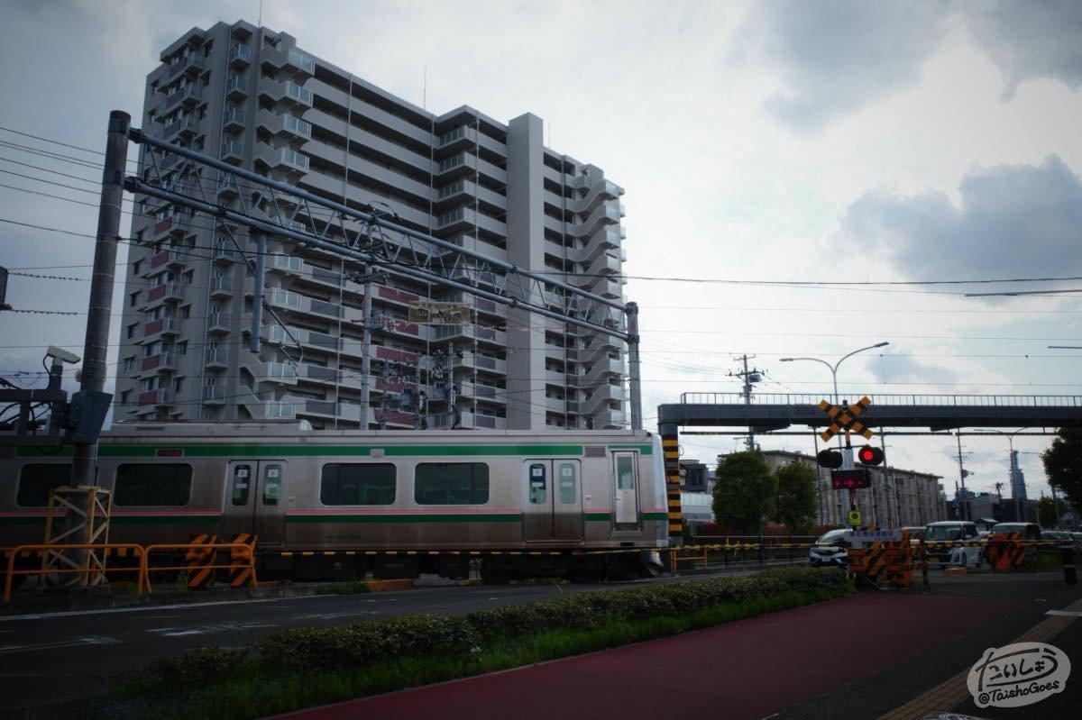 f:id:taisho_goes:20200524210214j:plain