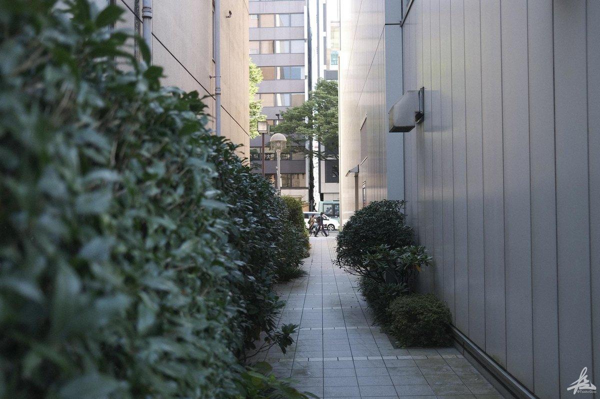f:id:taisho_goes:20201021200158j:plain